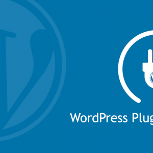 How to Install a WordPress Plugin  for Beginners 2021