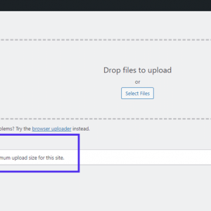 How to Increase the Maximum Upload Size in WordPress